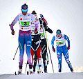 Nordic World Ski Championships 2017-02-26 (32414777503).jpg