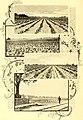 North Carolina and its resources (1896) (14761926026).jpg