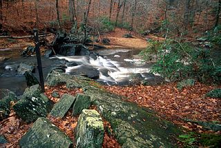 Prince William Forest Park 17,000 acres in Virginia (US) maintained by the National Park Service