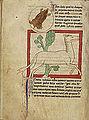 Northumberland Bestiary - A Mole; A Leucrota (f33v).jpg