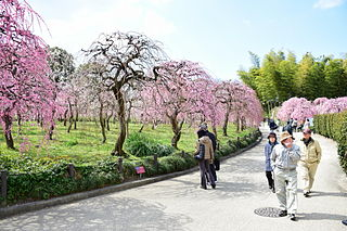 Tenpaku-ku Ward in Japan