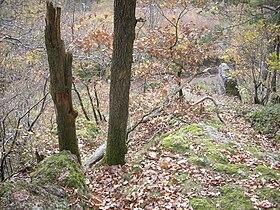 Oberthal-Teufelskanzel-20081026-06.jpg