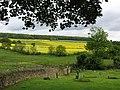 Old Whittington - view to Grasscroft Wood - geograph.org.uk - 1321701.jpg