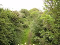Old railway - geograph.org.uk - 460322.jpg