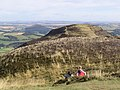 On Eildon Mid Hill - geograph.org.uk - 565596.jpg