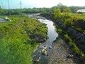 Orašačka reka.jpg