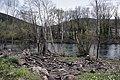 Orb River - Roquebrun 02.jpg
