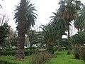 Palermo - panoramio - Dawid Glawdzin.jpg