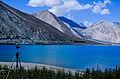 Pangong Tso Lake, Ladakh.jpg