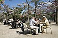 Paris - Playing chess at the Jardins du Luxembourg - 2955.jpg