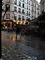Paris in the rain, 25 May 2010.jpg