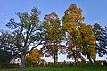 Park at Drottningholm Castle (45247095742).jpg