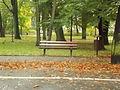 Park miejski w Kielcach (97) (jw14).JPG