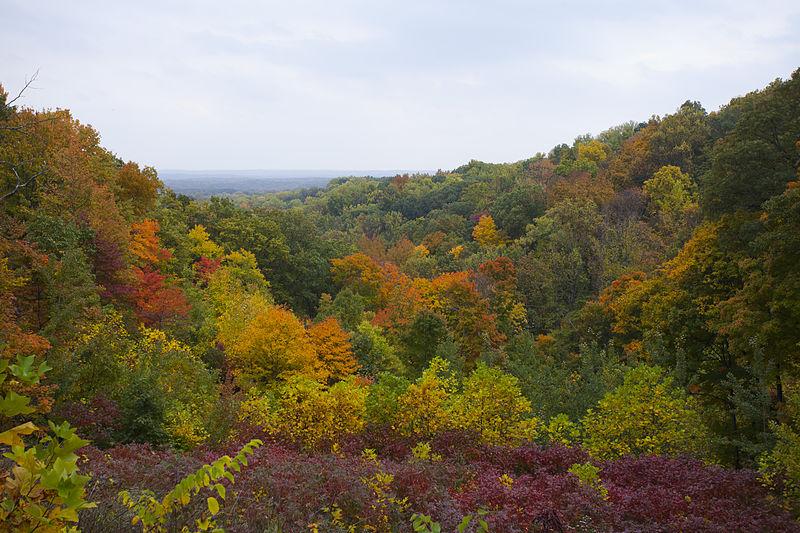 File:Parque Estatal Brown County, Indiana, Estados Unidos, 2012-10-14, DD 10.jpg