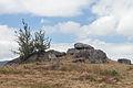 Parque arqueolóxico da arte rupestre. Campo Lameiro. Galiza CL23.jpg