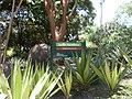 Parque del Este 2012 051.JPG