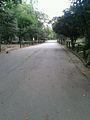 Parque do Ibirapuera 001.jpg