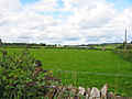 Pasture Cleveley Oxfordshire - geograph.org.uk - 231226.jpg