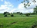 Pastureland near Aston - geograph.org.uk - 547319.jpg