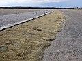 Pele's hair near Halemaumau, 2012.jpg