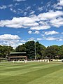 Petersham Oval 1.jpg