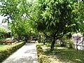 Phitsanulok, Mueang Phitsanulok District, Phitsanulok 65000, Thailand - panoramio (27).jpg