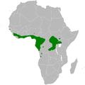Phyllastrephus albigularis distribution map.png