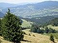 Pieninen - unten Jaworki Dorf - panoramio.jpg