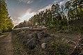 Pirkanmaa, Finland - panoramio (154).jpg