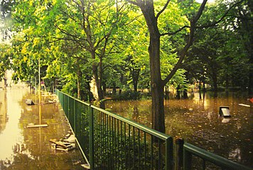 Pirna 2002 August Flood7.jpg