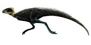Ornithischia - Image: Pisanosaurus