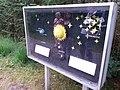 Planetenpad Westerbork (95).jpg