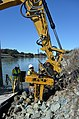 Planting willow poles along Sacramento River (8466827614).jpg