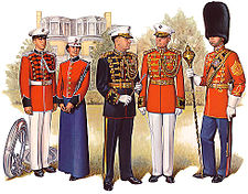 PlateVII Band