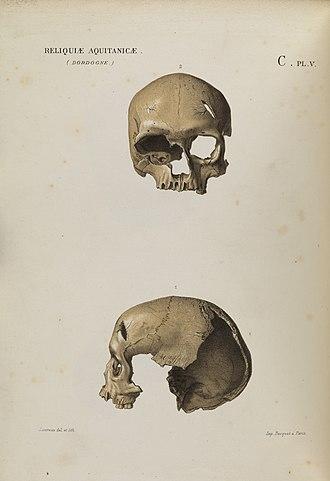 Cro-Magnon rock shelter - Two views of Cro-Magnon 2 (1875)