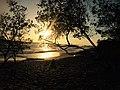 Playa Negra Costa Rica.jpg