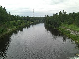Plyussa River river in Russia, a tributary of the Narva
