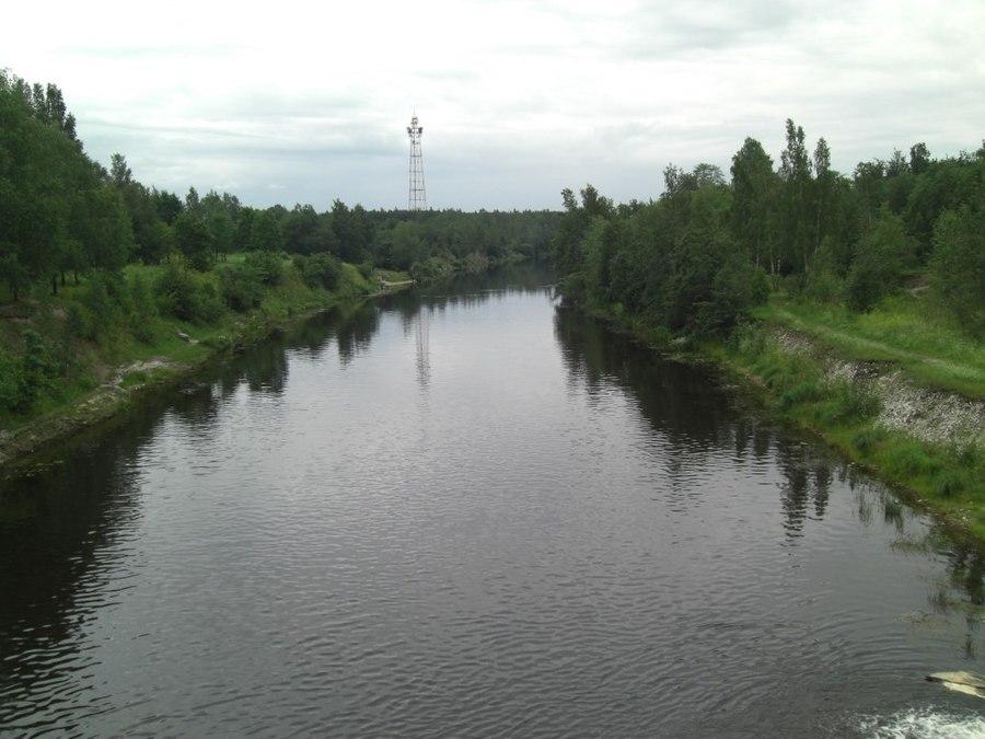 Plyussa River