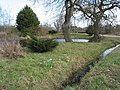Pond and drainage ditch, Hampton Park Road - geograph.org.uk - 723494.jpg