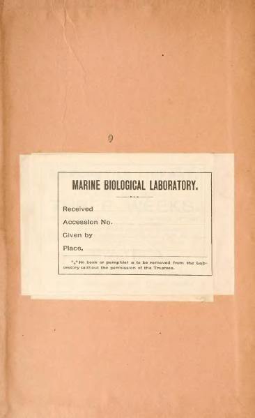 File:Popular Science Monthly Volume 39.djvu
