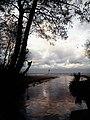 Potok Oliwski - panoramio (4).jpg
