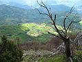 Povlen - zapadna Srbija - mesto Zarožije - Crvene stjene - Pogled prema reci Drini 1.jpg