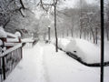 Prospect Heights Blizzard NYC 2-12-06 2.jpg
