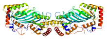 Protein APOBEC2 PDB 2nyt.png