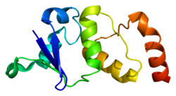 Protein KCND2 PDB 1nn7.png