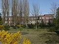 Puschkin Schule Welzow.jpg