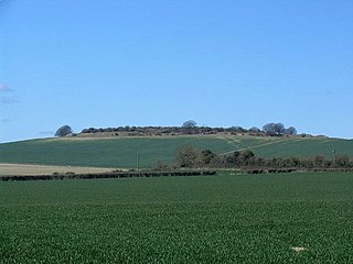 Quarley Hill site of an Iron Age univallate hillfort in Hampshire, southern England