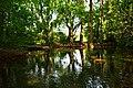 Quellsee Rote Quelle Wonfurt.jpg