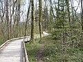 Sentier sur platelage