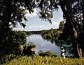 Rainbow Springs near Dunnellon, Florida (9390752033).jpg